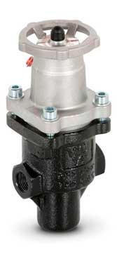 Direct action pressure reducing valve - Mod. 513 EN ASME/FNPT